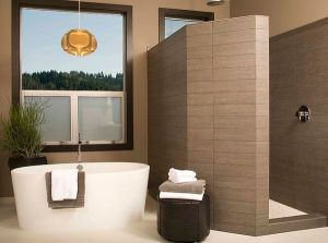 walk-in-shower-design